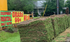 image of grass sod pallets