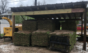 image of sod sold near by