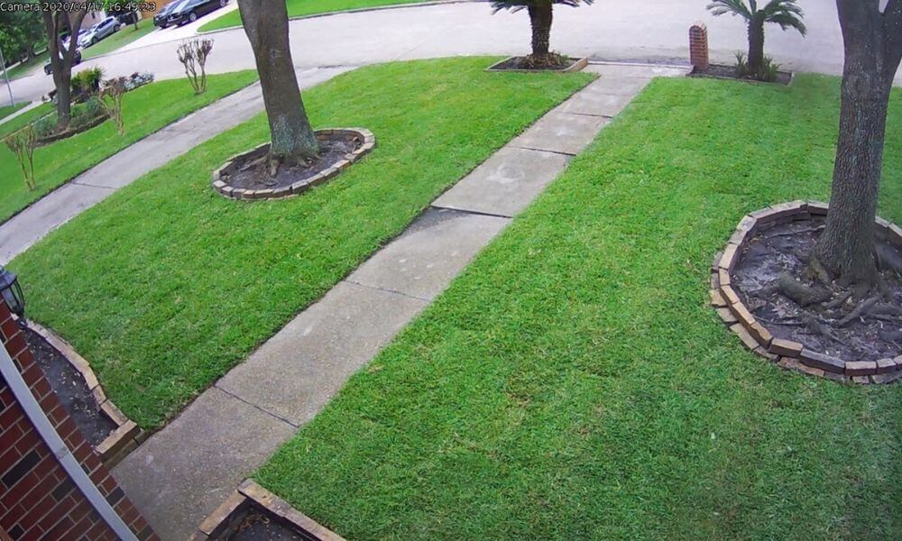 image of sod replacement services