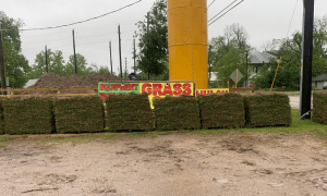 sod grass delivery in The Woodlands TX