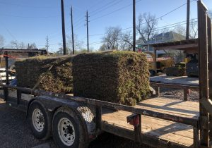 image of grass sod on trailer