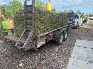 image of sod on delivery trailer