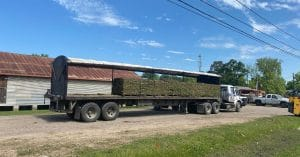 image shows trailer loaded with grass pallets