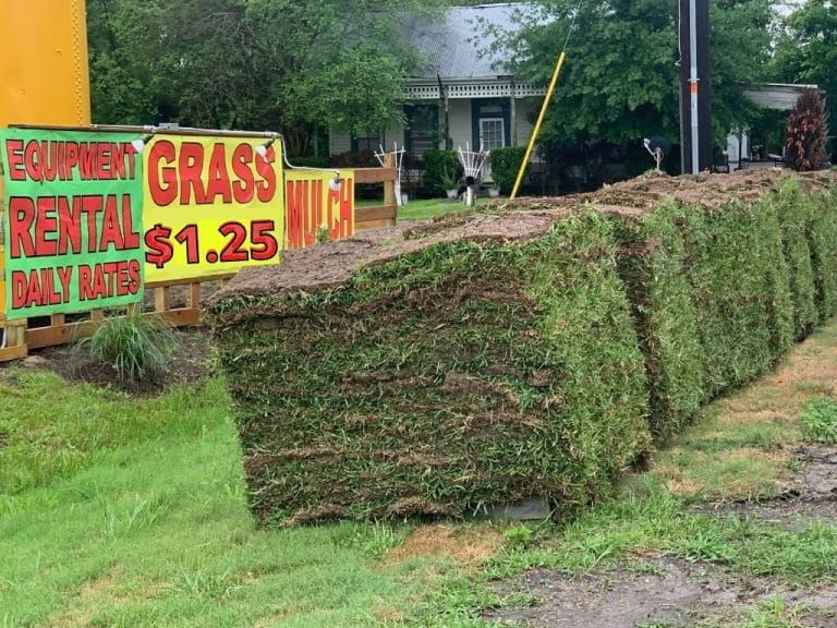 grass and topsoil for sale